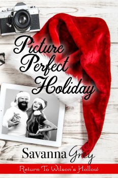 Picture Perfect Holiday ebook cover